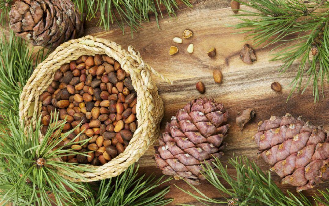 7 Super Powerful Nuts To Last Longer In Bed